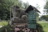 Wildpark11