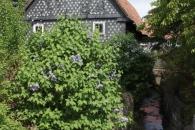 Obercunnersdorf09